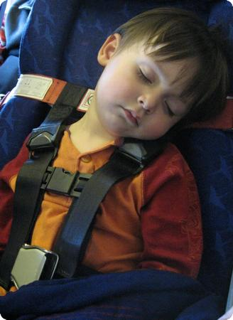 Picture Of The Week CARES Airplane Harness