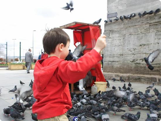 E feeding pigeons outside the New Mosque in Istanbul