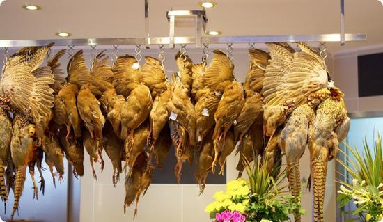 Fowl display at a market in Paris