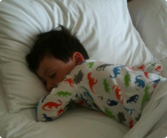 Everest sleeps through the morning