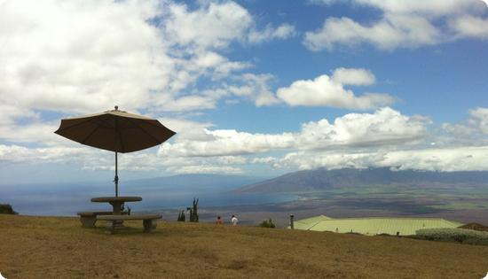 View from Alii Kula Lavender Farm on Maui