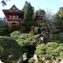 Japanese Tea Garden in San Francisco's Golden Gate Park