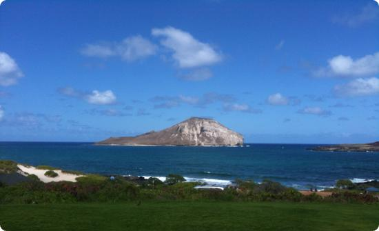 View from Sea Life Park on Oahu