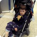 Tired Everest catches a ride in the stroller