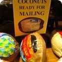 Handpainted coconuts for sale at the Honua Kai Maui hotel