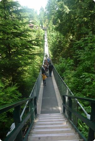 Do you dare to cross the Capilano Suspension Bridge?