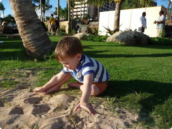 Eilan is experimenting with the sand from the safety of the grass!