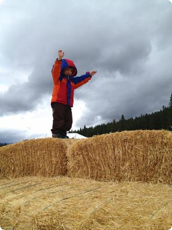 Obstacle course at the Suncadia Resort Harvest Festival
